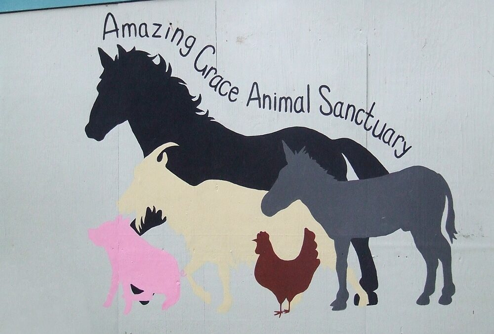Amazing Grace Gets A New Mural